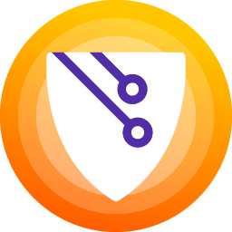 Application Shield Icon